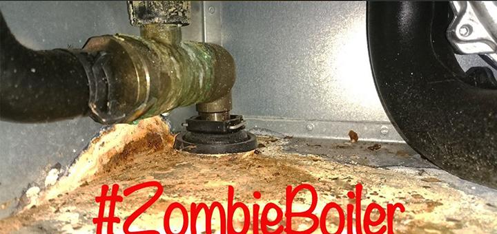 Zombi boiler competition winner image