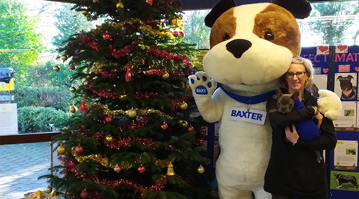 Baxi Heating Dogs Trust
